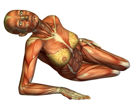 Muscle female body lying