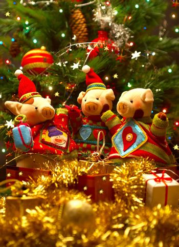 Christmas festivities. Christmas tree
