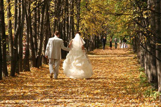 autumn wedding tree park romance couple walk