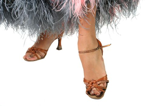 isolated grey feather dress dancing shoe foot