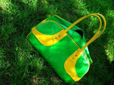 green summer bag on grass