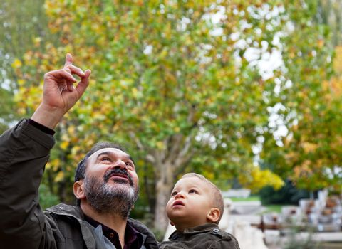 grandfather holding a child  in a park is pointing up