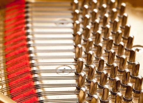 Piano strings in macro