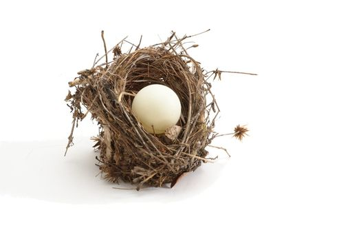 Small bird nest with ping-pong ball instead of egg isolated