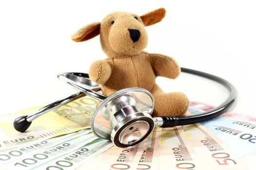 Veterinarian costs