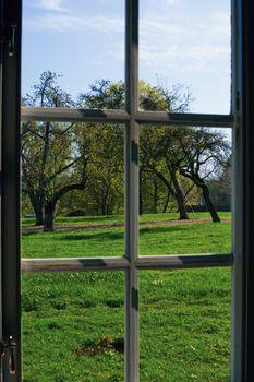 Window in the Garden