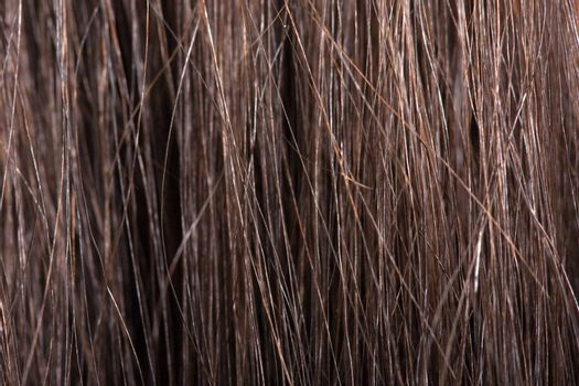 Human female beauty hair macro textured background