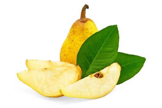 Yellow pear tree with leaves
