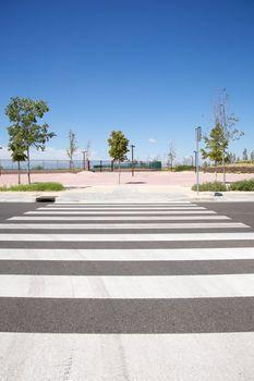 new city crosswalk