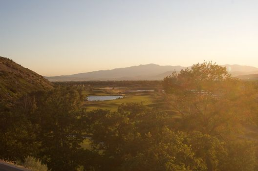 looking down on golf course over the top of trees and foliage with bright sunshine from the side