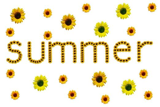 summer-made with sunflowers isolated on white