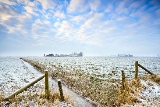 winter in Dutch farmland