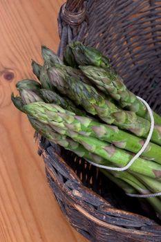 Bundle of freshly harvested asparagus crowns