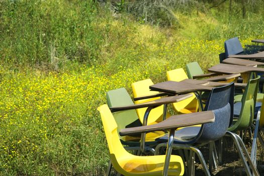 Bunch of old school chairs in grassy field.