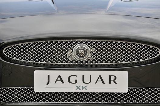 Front of Jaguar