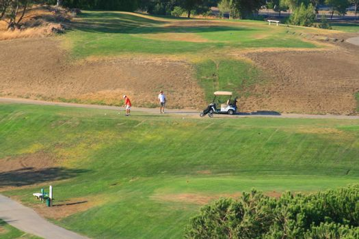 Golfers next to a golf cart on a big golf course.