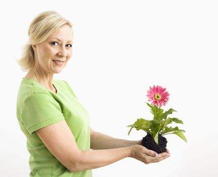Side view of smiling adult blonde woman standing holding pink gerber daisy plant.