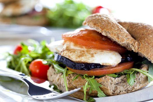 Vegetarian Sandwich Close Up