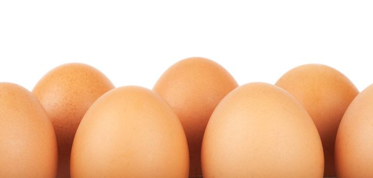 Row of brown eggs isolated over white background