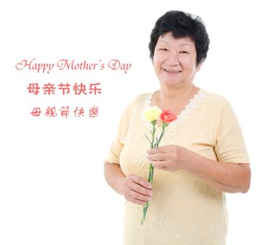 Happy mother's day concept. Asian senior mother holding carnation flowers. Characters in Chinese writing means happy mothers day