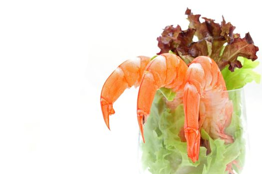 Shrimp cocktail in a martini glass with lettuce