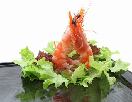 Shrimp cocktail salad on dish