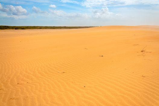 Desolate Sandy Desert