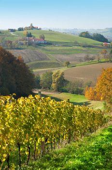 Grasslands hils and wineyards at Robaje - Croatia