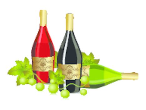 white background with champagne bottle and grapevine vector for new year and other events