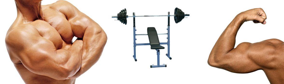 Bodybuilders and simulator