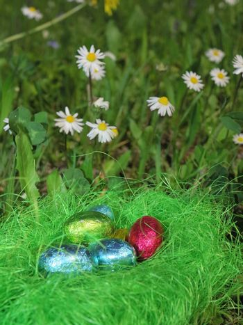 Colorful Easter eggs decorated in the grass