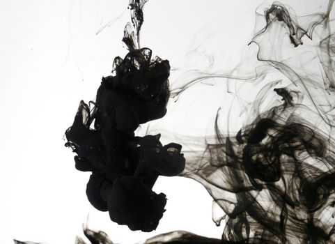 Indian ink in water with a white back ground.
