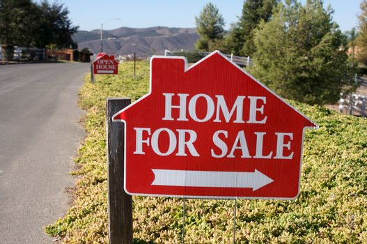 Home For Sale Signs along a rural street.