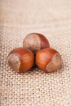 Closeup view of three hazelnuts on a sack texture