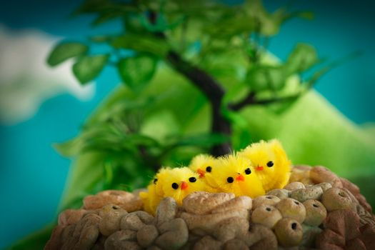 Easter yellow chickens in spring valley. Easter background