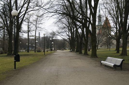 bench in spring park.