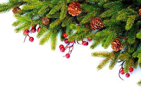 Christmas Evergreen Tree Border Design. Isolated on white