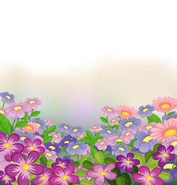 Illustration of a garden of colorful flowers on a white background