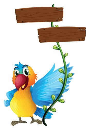 Illustration of the empty boards with a colorful parrot on a white background