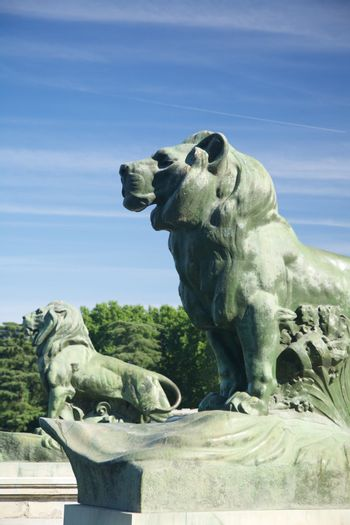 lions side in Madrid park
