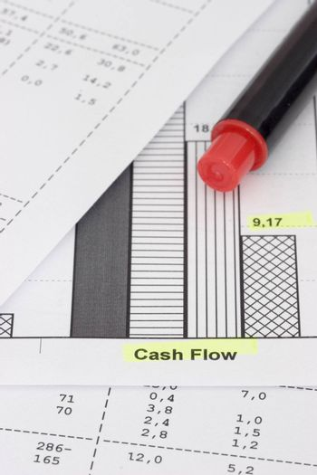 Business papers and red pencil. Focus on the words cash flow