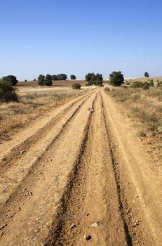 Furrows on a field in Spain