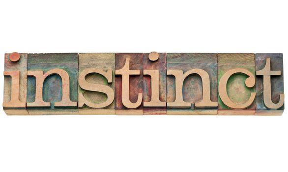 instinct word in letterpress type