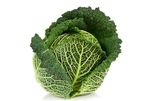 Cabbage isolated over white