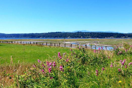 Marrowstone island. Olympic Peninsula. Washington State.
