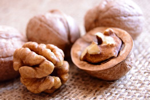Mature walnuts on woven fabric