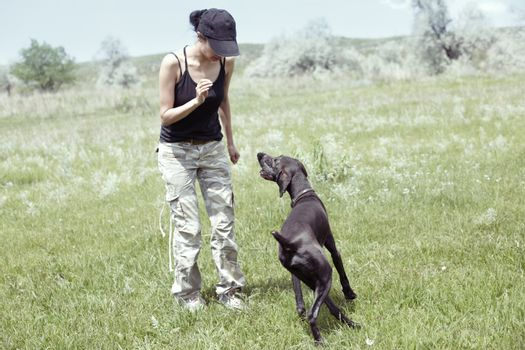 Woman and dog outdoors training. Natural light and colors