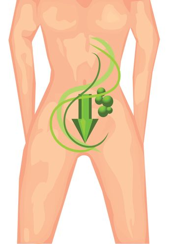 healthy lifestyle. female body with a symbolic arrow