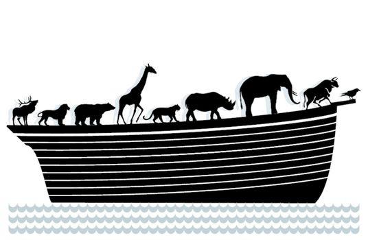 Ark and animals