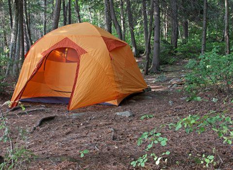 An orange tent sitting in Algonquin Provincial Park in Ontario, Canada.